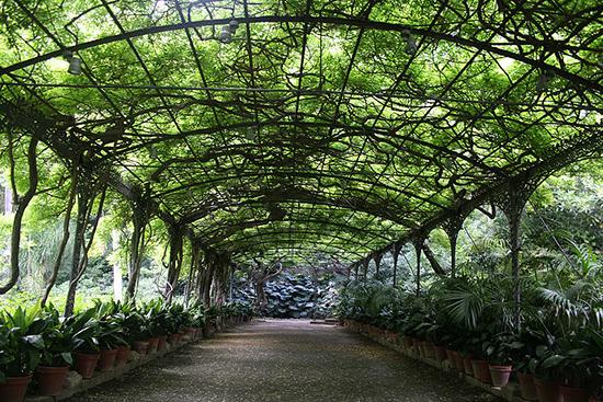 Der botanische Garten La Concepción in Málaga